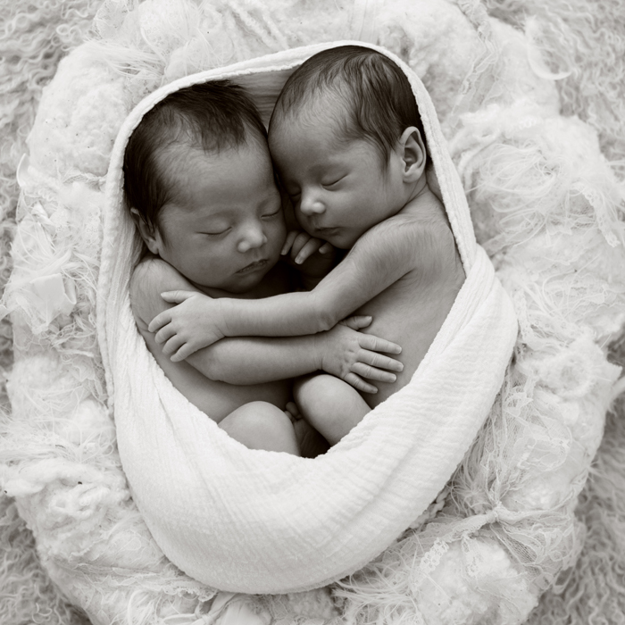 Newborn Twin Photo Shoot